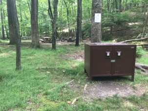 062217 - Bear Box