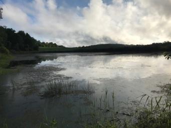 072617 - Lake Reflection