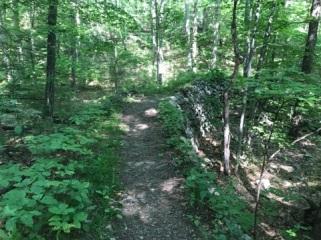 073117 - Trail