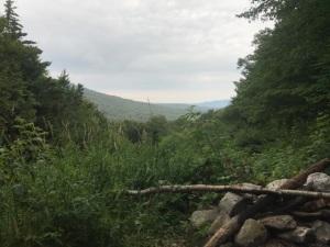 081117 - Dinner View