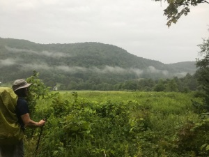 081817 - Fog