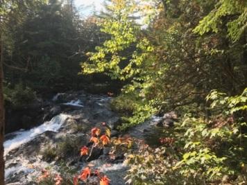 092417 - Otter Pond Stream