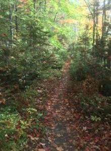 092617 - Trail 2